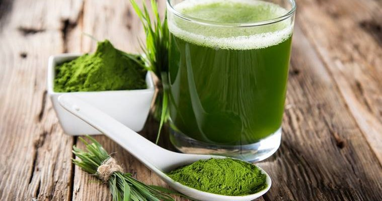 Reasons to Drink the Benefits of Wheat Grass